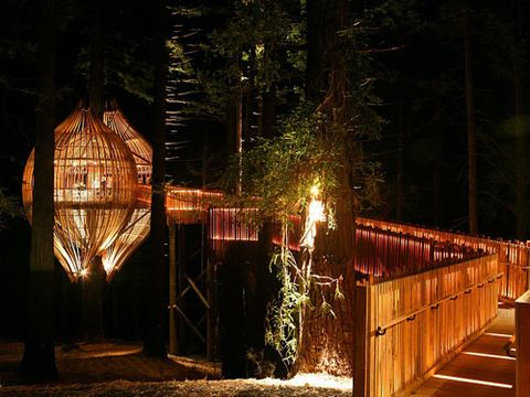 10 Best Treehouse Plans and Designs - Coolest Tree Houses Ever Simple Good Design Squirrel Treehouse on