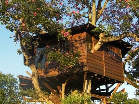 10 best treehouse plans and designs coolest tree houses ever an office fit for malvernweather Choice Image