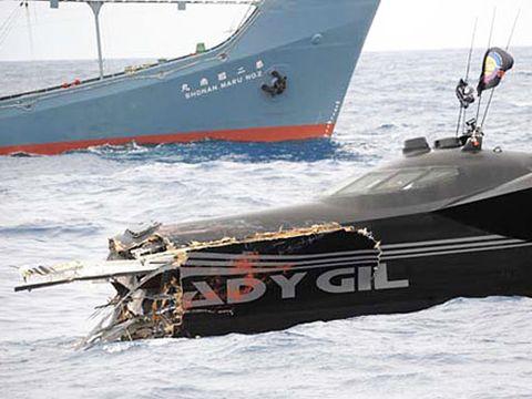 Ady Gil Whaling Shipwreck
