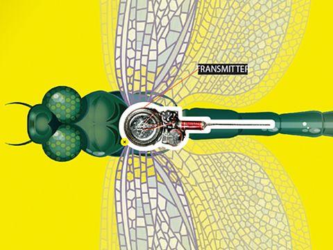 Bug Transmitter Illustration