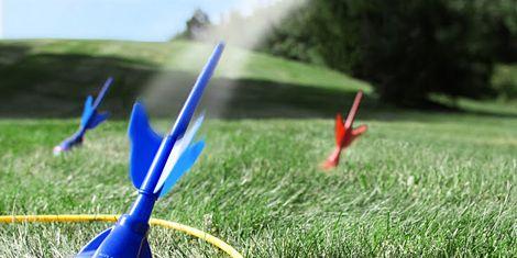 Grass, Carmine, Azure, Grassland, Electric blue, Cobalt blue, Grass family, Majorelle blue, Meadow, Coquelicot,
