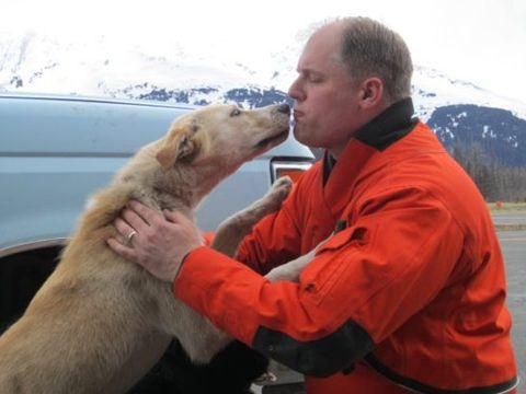 coast guard pilot craig neubecker with sled dog blizzard after godwin glacier rescue.