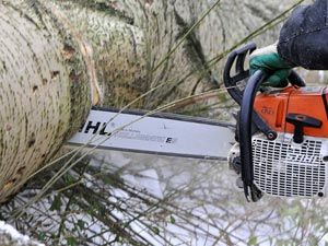 How to Use a Chainsaw in Cold Weather - Winter Power Tool Prep