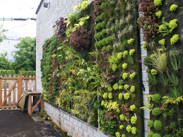 Image result for VERTICAL GARDENS