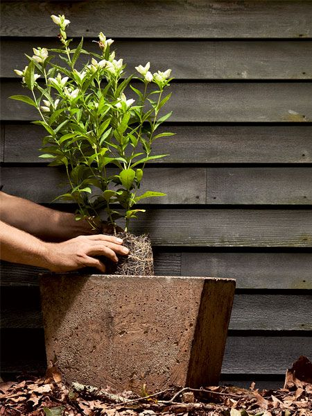 How To Build A Concrete Planter 4 Easy Steps For Building A Cement