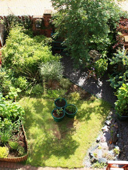 Plant, Shrub, Garden, Flowerpot, Backyard, Yard, Groundcover, Lawn, Courtyard, Landscaping,