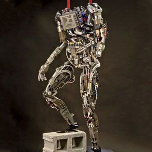 Start Your Mad Science: DARPA's Humanoid Robot Challenge
