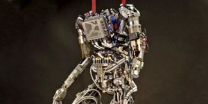 DARPA Robotics Challenge competitor will be able to test their software on ATLAS, a humanoid robot by Boston Dynamics.