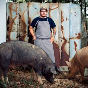 How to Cook the Whole Darn Pig