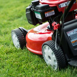 6 Tips for Mowing When It's Wet
