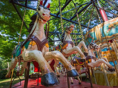 Amusement park, Sculpture, Amusement ride, Fawn, Carousel, Liver, Playground, Horse, Park, Fair,