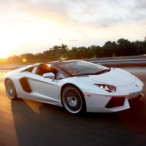 The Art of Renting an Exotic Sports Car