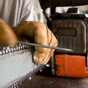 So You Have a Chainsaw—Here's What Else You Need
