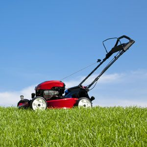 Your Guide to Buying a Walk Lawnmower