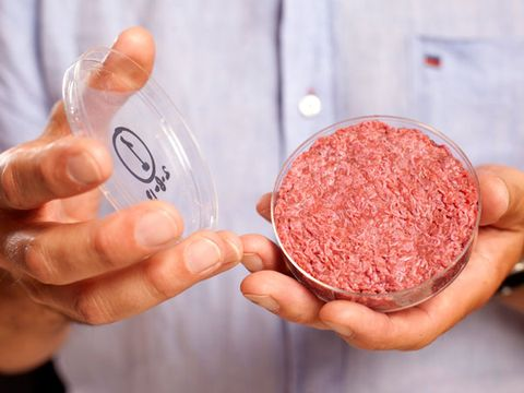 The Next Red Meat: Lab-Grown Beef