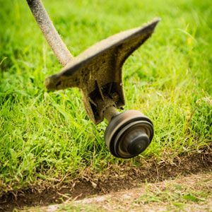 So You Have a Gas Engine String Trimmer—Here's What Else You Need