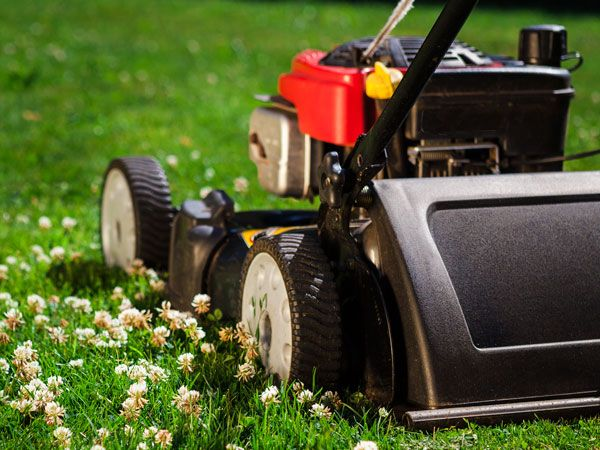 9 Mowing Tips to Cut the Lawn of Your Dreams