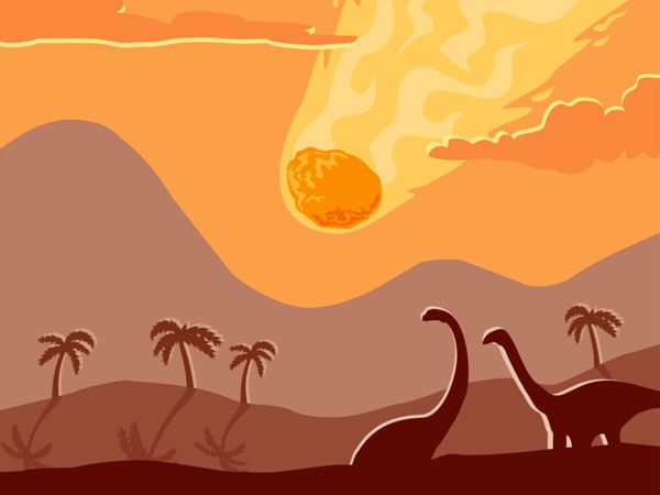 What Doomed the Dinosaurs Also Shaped Earth's Plant Life
