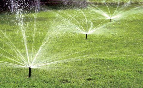 rain bird rotary nozzles