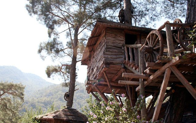 The Right Tools to Build an Extreme Treehouse