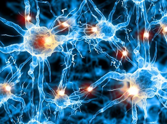 DARPA's Next Challenges: Self-Patching Software and Healing the Brain