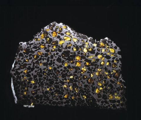 The Esquel meteorite, which consists of gem-quality crystals embedded in metal. The magnetism of this metal was used in the study.