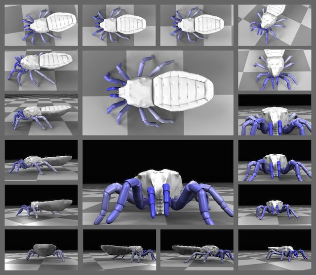 Watch a 400-Million-Year-Old Arachnid Walk