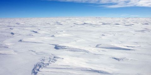 visiting the south pole