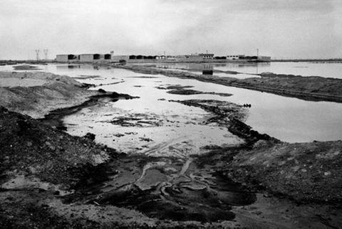 nowruz oil field 1983
