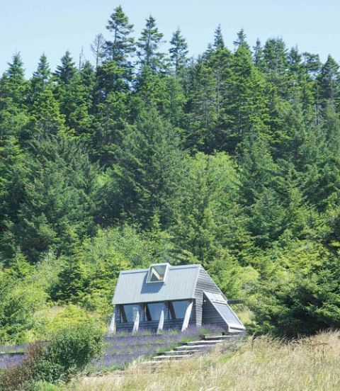 Small House on the Oregon Coast