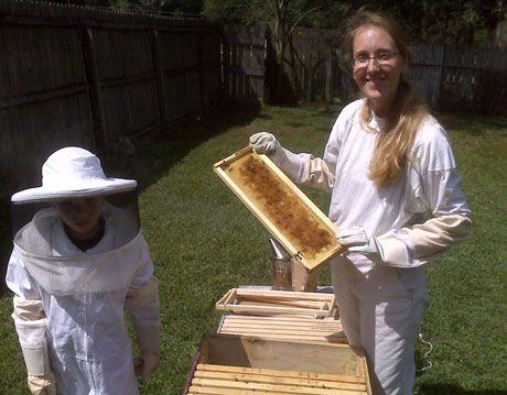 Urban Beekeeping - Photos of Suburban and City Beekeepers
