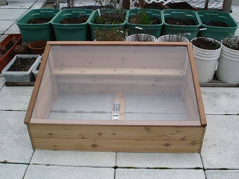 Cold Frame on the Roof