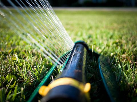 Best Time To Water Gr Lawn Watering Tips