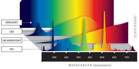 ultimate light bulb test incandescent vs compact fluorescent vs led