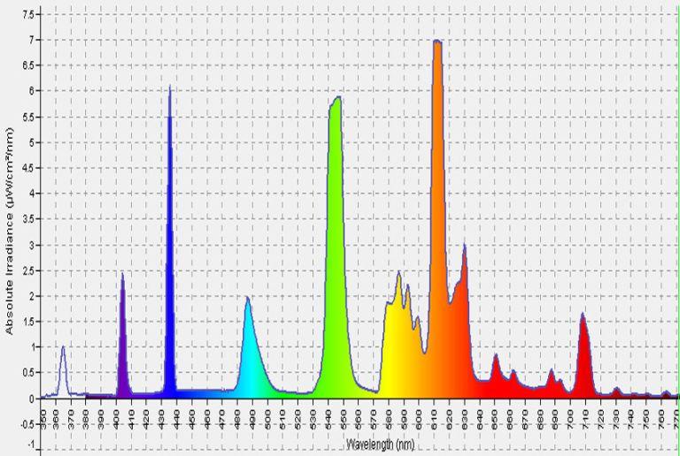 Ultimate Light Bulb Test - Incandescent vs. Compact Fluorescent vs ...