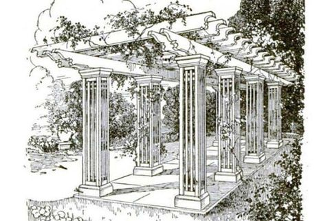 Line, Column, Botany, Classical architecture, Artwork, Illustration, History, Drawing, Ancient history, Ancient roman architecture,