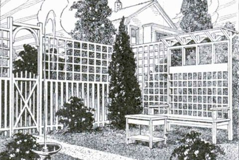 Garden, House, Shrub, Evergreen, Yard, Backyard, Home fencing, Conifer, Courtyard, Illustration,