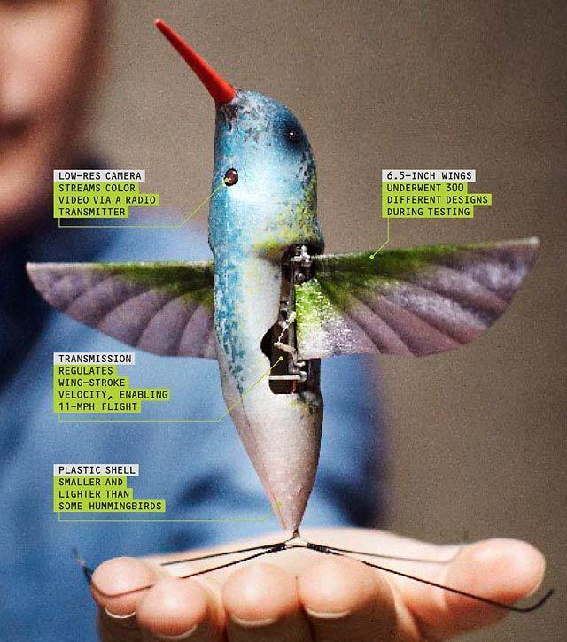 Flight, Reimagined: The First Robotic Hummingbird