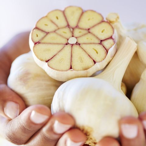 Hands holding whole and sliced garlic bulbs