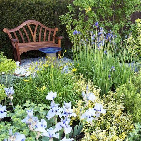 Chelsea Flower Show Garden