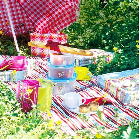 Picnic rug with picnic food