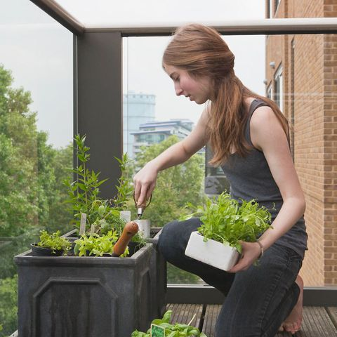 Woman gardening on balcony