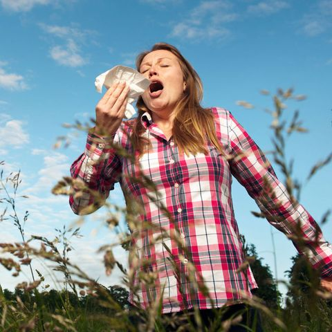 woman with hay fever sneezing in long grass