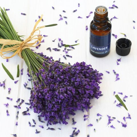 Lavender flowers and lavender oil