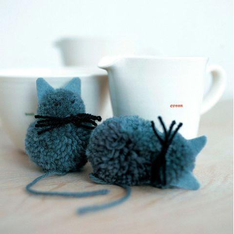 pompom kittens