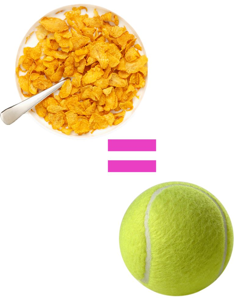 One serving size of cereal