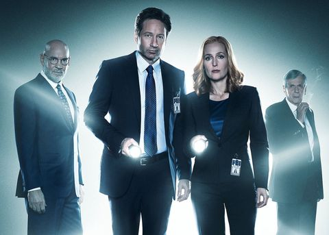 X Files David Duchovny Gillian Anderson