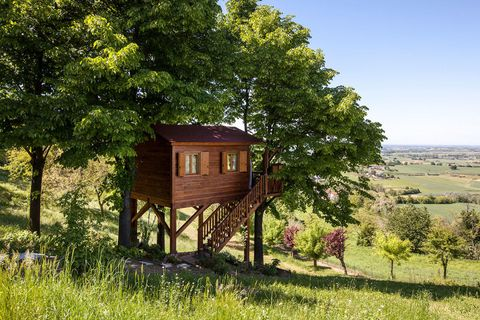 Airbnb treehouse, Italy