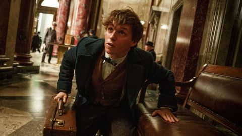 Eddie Redmayne, Harry Potter: Fantastic Beasts and Where to Find Them