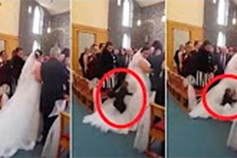 Bride divebombed by little boy
